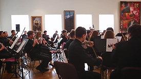 Artnovi orchestra