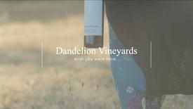 Dandelion Vineyards - Brand Video