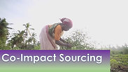 Co-Impact Sourcing by doTERRA Provides the Best Essential Oils and Lifts Entire Communities