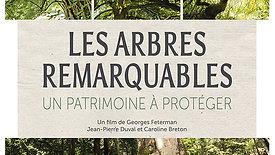 Les arbres remarquables, un patrimoine à protéger (1)