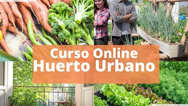 Curso  Huerto Urbano Online