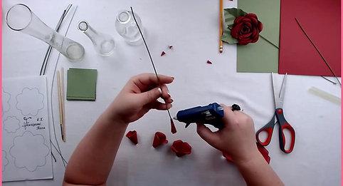 Rosa tutoriel