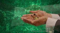 CBK-Hand 4