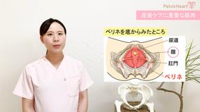 【無料動画】産後ケアのポイント