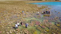 2018 BIOL3305 Temperate & Tropical Marine Ecology Fieldcourse