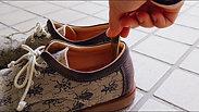 オオコノハムシ靴べら使用動画