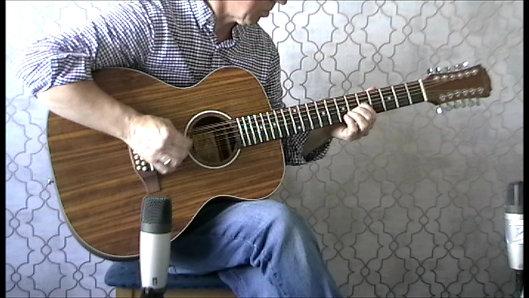 Freshman FALTDWALO12 Acoustic