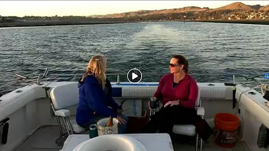 Sunset & Champagne Bay Cruise