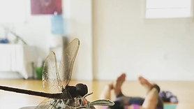 Margarida Tree Yoga dragonfly