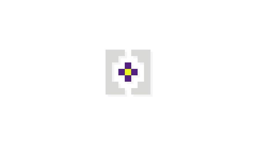 MSP Logo Animation