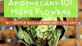 Episode 31: Hops Flowers