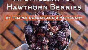 Episode 11: Hawthorn Berries