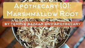 Episode 20: Marshmallow Root