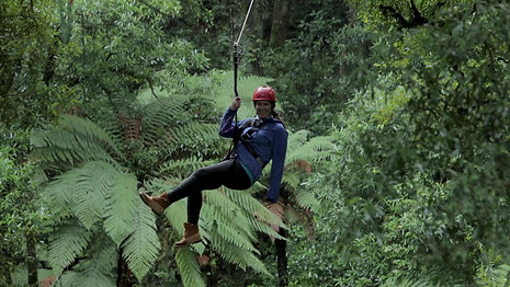 Rotorua Canopy Tours 15 Sec