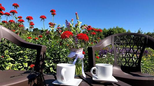 Visit Us - U-Pick Flower Garden