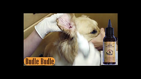 BUDLE BUDLE  EAR CLEANER