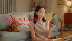 "Shiseido Aqua Label ""Gel"""