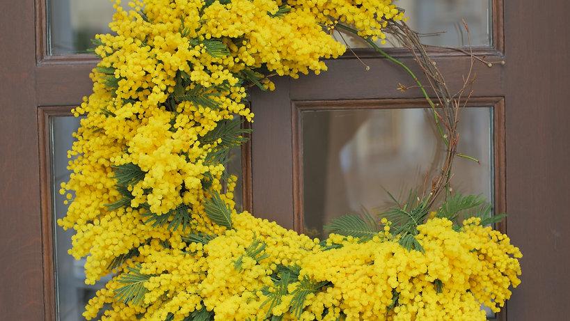 Sum_Mimosa Wreath