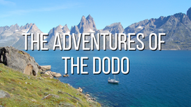 The Adventures of the Dodo