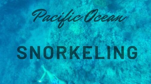 Pacific Ocean Snorkeling