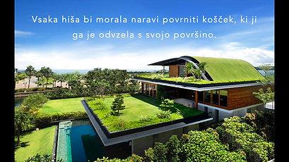 Prednosti zelene strehe