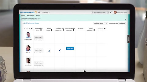 SAP SuccessFactors Performance & Goals Overview