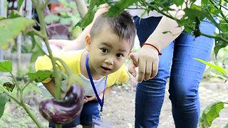 Kindy Town Bilingual Preschool