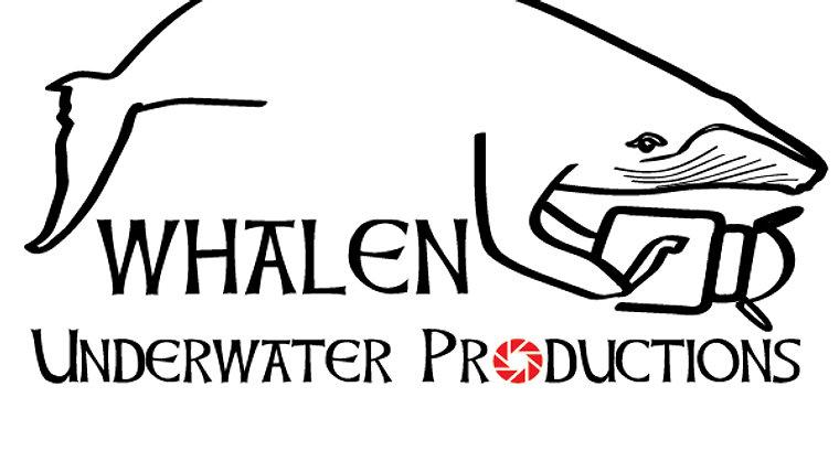 Whalen Underwater