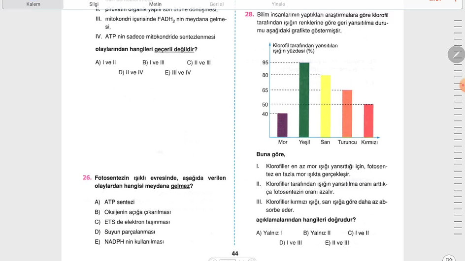 Biyoloji 5.Gün (19-28)