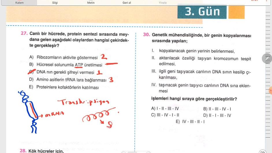Biyoloji Ayt 3.Gün (18-36)