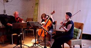 Alternative Strings Trio