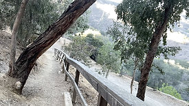 Coldwater Canyon Park, Beverly Hills, CA