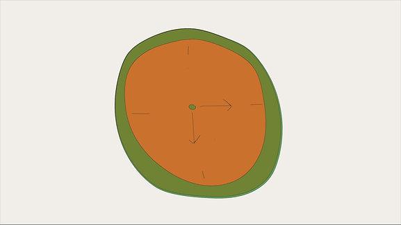 Intermittent Fasting Motion Design
