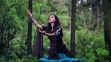 Danza Inglesa medieval