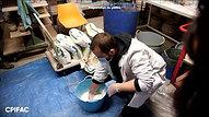 Cours Moulage Plâtre - 2.01 - Préparation du plâtre