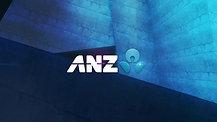 ANZ NZC Break Bumper