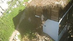 Casa Selva - IG Clip