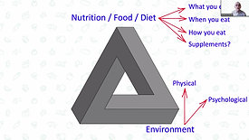 The Triangle Of Life