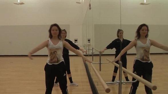 Flux Dance Project - PKG