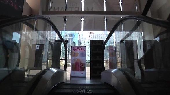 Chicago International Film Festival - PKG