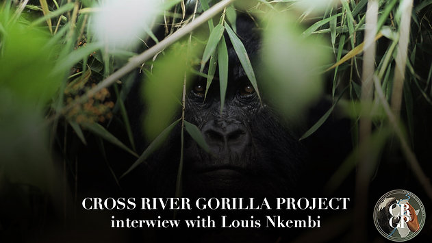 Louis Nkembi, Cameroon