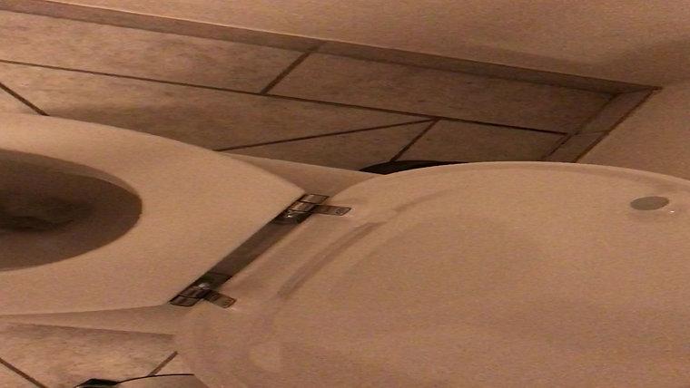 Høj hyletone i Novasol P52900