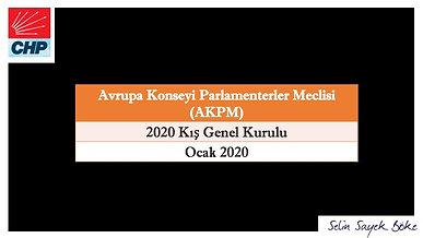 Avrupa Konseyi Parlamenterler Meclisi 2020 Kış Oturumu