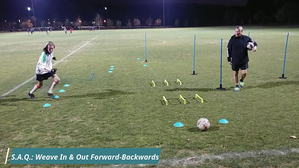 Elite Private Lesson Program | Dribbling Moves & 1 Touch Passing  |  Professional Soccer Training