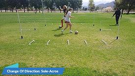 Professional Soccer Training With CGSA