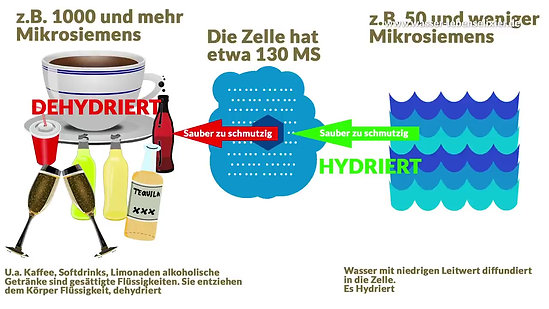 Unterschied: Trinkwasser - Osmosewasser