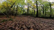 L-UKE #26  |  Bradgate Autumn 2020 (FPV)