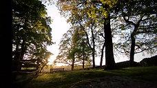 L-UKE #9     Woodland (FPV)