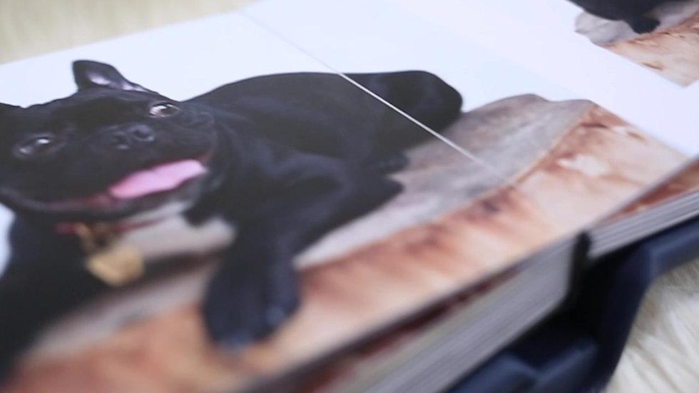 Pet Impressions Album - Pablo