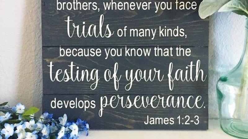 Treasured Scripture: James 1:2-6